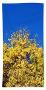 Yellow Autumn Tree Beach Towel