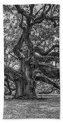 Angel Oak Tree In Black And White Beach Towel