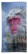 Japanese Macaque Beach Towel