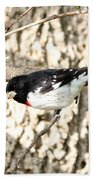 Rose Breasted Grosbeak Beach Towel
