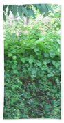 Camera Peak Thru Nature Buy Faa Print Products Or Down Load For Self Printing Navin Joshi Rights Man Beach Towel