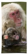 Snow Monkeys, Japan Beach Towel