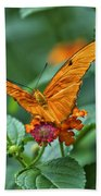 3 2 1 Prepare For Butterfly Liftoff Beach Towel