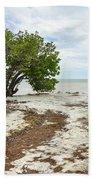 Anne's Beach-3 Beach Towel