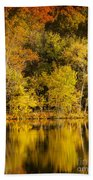 Autumn Color Beach Towel