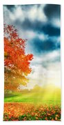 Autumn Fall Landscape In Park Beach Towel