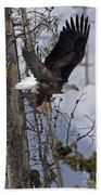 Bald Eagle   #8309 Beach Towel