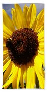 Bee On Flower Beach Towel by Les Cunliffe