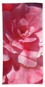 Begonia Named Nonstop Pink Beach Towel