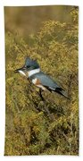 Belted Kingfisher With Fish Beach Towel