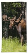 Big Fella Beach Towel
