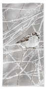 Bird Beach Towel