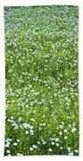 Blooming Flax Field Beach Towel