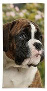 Boxer Puppy Beach Towel