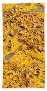Bull Kelp Blades On Surface Background Texture Beach Towel