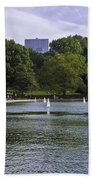 Central Park Pond Beach Towel