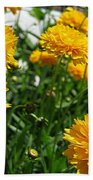 Coreopsis Named Early Sunrise Beach Towel