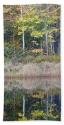 Crawford Notch State Park - White Mountains New Hampshire Usa Beach Towel