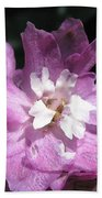 Delphinium Named Magic Fountains Lilac Pink Beach Towel