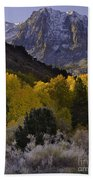 Eastern Sierras In Autumn Beach Towel