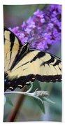 Eastern Tiger Swallowtail Butterfly On Butterfly Bush Beach Towel
