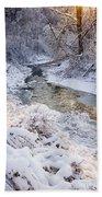Forest Creek After Winter Storm Beach Towel
