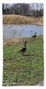 3 Geese Beach Towel
