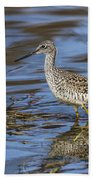 Greater Yellowlegs Beach Towel