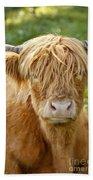 Highland Cow Beach Sheet