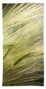 Hordeum Jubatum Grass Beach Towel
