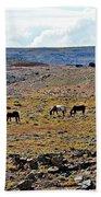 3 Horses At 4 Corners Beach Towel
