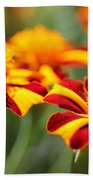 Novelty French Marigold Named Mr. Majestic Beach Towel