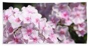 Phlox Paniculata Named Bright Eyes Beach Towel