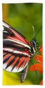 Piano Key Butterfly Beach Towel