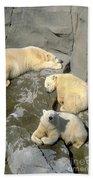 3 Polars Beach Towel