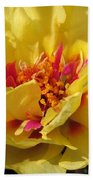 Portulaca Named Happy Hour Banana Beach Towel