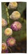 Prickly Pear Cactus  Beach Towel