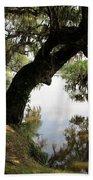 Tree  Reflection Beach Towel