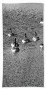 Wild Birds And Pond Beach Towel