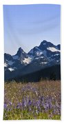 Wildflowers In The Cascades Beach Towel
