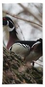 Wood Duck Beach Towel