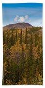 Yukon Gold - Fall In Yukon Territory Canada Beach Towel