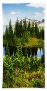 30920-55 Trailside Lake Beach Towel