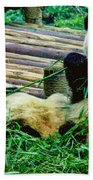 3722-panda -  Colored Photo 1 Beach Towel
