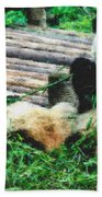 3722-panda -  Pastel Chalk 2  Beach Towel