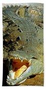 American Crocodile Beach Towel