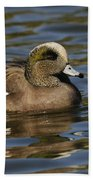 American Widgeon Beach Towel