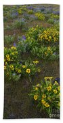 Balsamroot Beach Towel