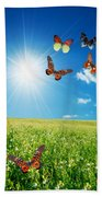 Colorful Buttefly Spring Field Beach Towel