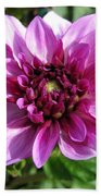 Dahlia Named Blue Bell Beach Towel